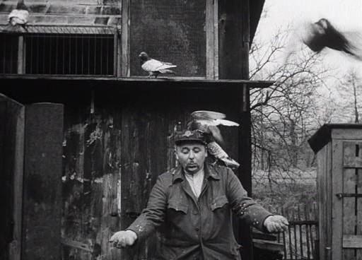 Az állomásfőnök és a galambok.