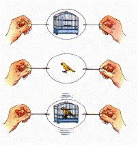 A thaumatrope működési elve