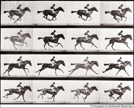 Muybridge felvételsorozata a vágtató lóról
