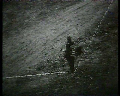 <em>Amerikai anzix</em> (Bódy Gábor, 1975)