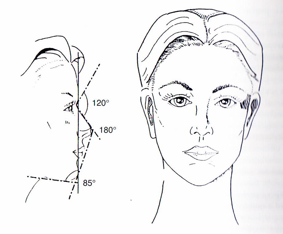 Ideális női arc