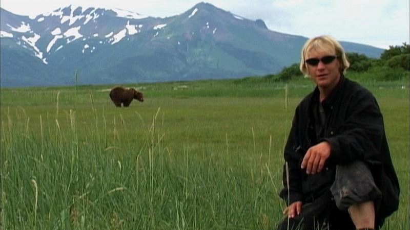 Timothy Treadwell akcióban - A medvebarát