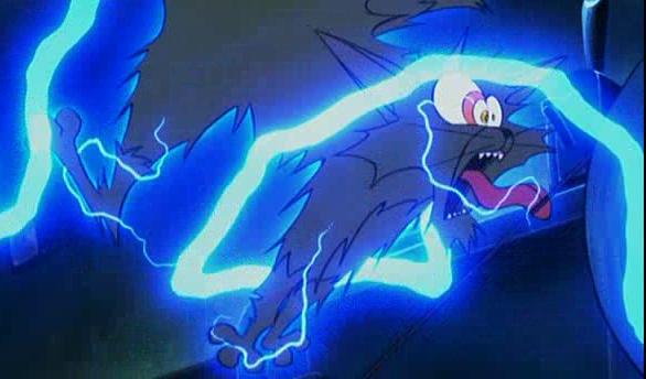 áramütéses macska2