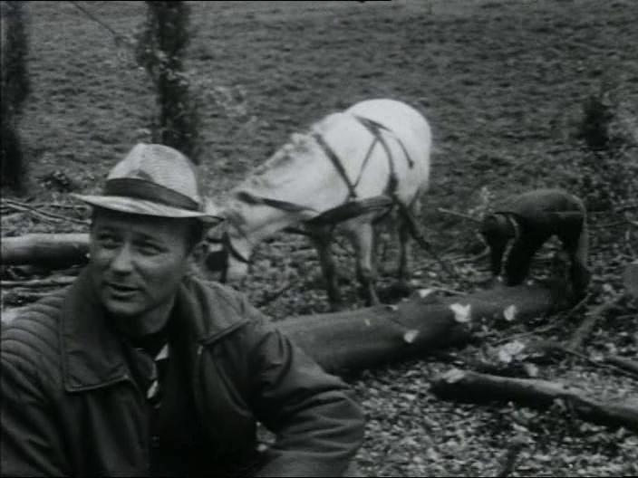 3. kép <em> Ne Sápadj! </em>. Gulyás Gyula, Gulyás János, 1983.