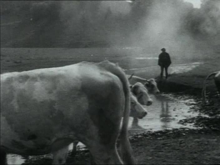 4. kép <em> Ne Sápadj! </em>. Gulyás Gyula, Gulyás János, 1983.