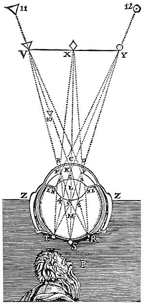 Descartes: A retinális kép létrejötte (Descartes: <em>La Dioptrique</em>, 1637)