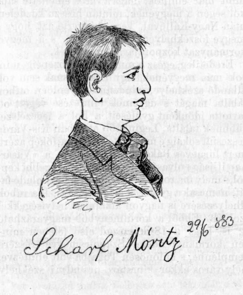 """Scharf Móric. A Vasárnapi újság 1883. július 8-i számának illusztrációja (""""Ábrányi Lajos eredeti rajzai után"""")."""