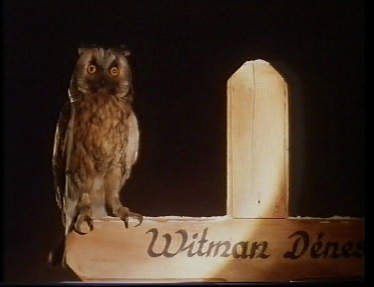 8. kép. Witman fiúk (Szász János, 1997)