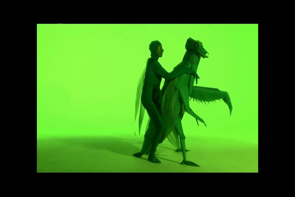 Imádkozó sáska (Praying mantis). Green Porno (Isabella Rossellini, 2008)