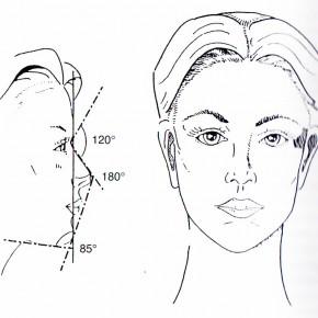 Pengeélen. A kozmetikai sebészet és a nemmel bíró test technikai előállítása