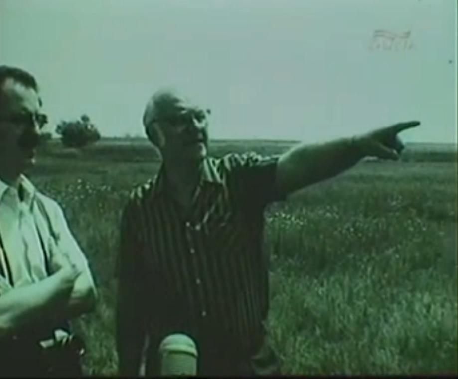 Törvénysértés nélkül (Gulyás János, Gulyás Gyula, 1988)
