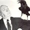 hitchock_crow