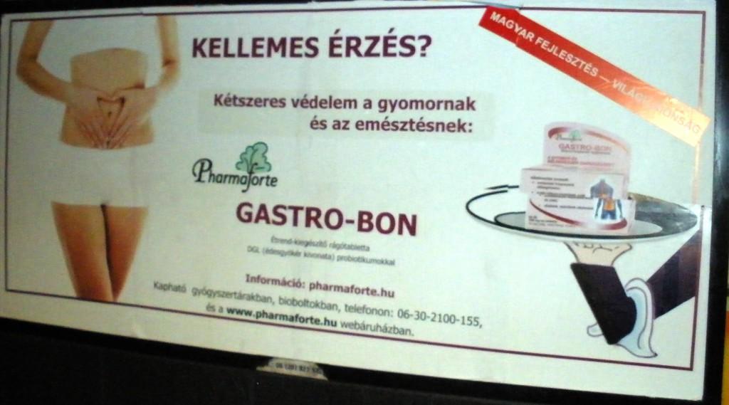 13/3. ábra: Gastro-Bon