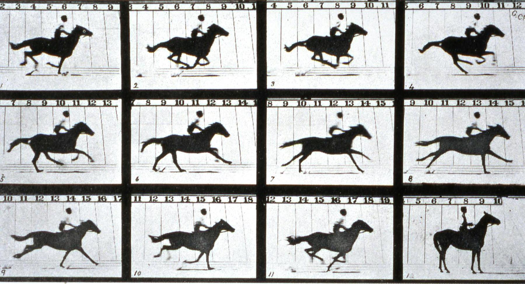 A mozgó ló, Eadweard Muybridge, 1878.