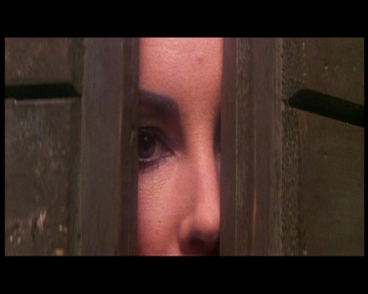 Az első pillantás a hárpiára (és viszont). <em>A makrancos hölgy</em> (<em>The Taming of the Shrew</em>. Franco Zeffirelli, 1967)