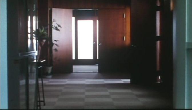 Keretek és felületek. <em>Rögeszme</em> (<em>Tsumetai chi</em>. Aoyama Shinji, 1997)