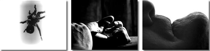 Montázs a <em>Persona</em> (Ingmar Bergman, 1966) kezdő képkockáiból.